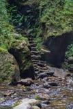 Escadaria de pedra na estrada foto de stock royalty free