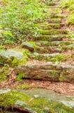 Escadaria de pedra na floresta nacional de Chattahoochee imagem de stock royalty free