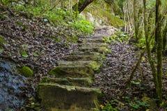 Escadaria de pedra no desfiladeiro Fotos de Stock Royalty Free