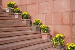 Escadaria de pedra vermelha com as flores em uns vasos de flores Imagens de Stock