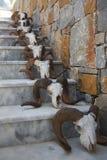 Escadaria decorada com crânios imagens de stock royalty free