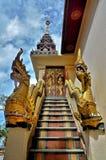 A escadaria do Naga Fotos de Stock Royalty Free