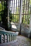 Escadaria espiral do mármore velho do vintage na mansão coberto de vegetação abandonada fotografia de stock
