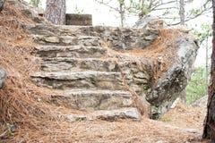 Escadaria esquecida imagens de stock royalty free