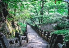 Escadaria nas montanhas de Wudang fotografia de stock