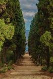 Escadaria no brava da costela Imagem de Stock Royalty Free