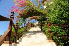 Escadaria no jardim Fotografia de Stock