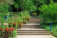 Escadaria no parque imagens de stock royalty free