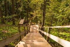 Escadaria nos montes Fotos de Stock
