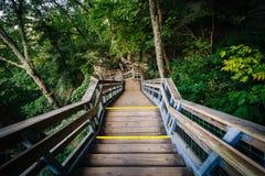 Escadarias no parque estadual da rocha da chaminé, North Carolina imagem de stock royalty free