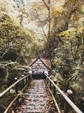 Escadas às cachoeiras Fotografia de Stock Royalty Free