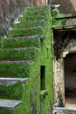 Escadas abandonadas Foto de Stock Royalty Free