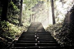 Escadas acima Imagens de Stock Royalty Free
