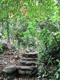 Escadas antigas Foto de Stock Royalty Free