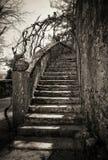 Escadas antigas Imagem de Stock