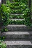 Escadas antigas Fotos de Stock