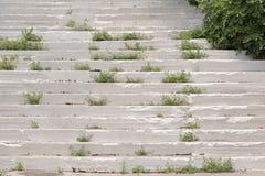 Escadas brancas cobertos de vegetação com o musgo e a grama imagem de stock royalty free