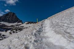 Escadas cinzeladas em Logan Pass Snow imagens de stock royalty free