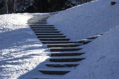 Escadas cobertas com a neve Imagens de Stock