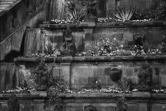 Escadas cobertos de vegetação foto de stock
