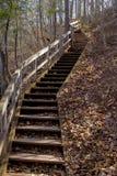 Escadas curvadas Imagem de Stock Royalty Free