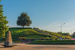 escadas da árvore e da rocha de chuveiro dourado Fotografia de Stock Royalty Free