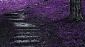 Escadas da fantasia Imagem de Stock Royalty Free