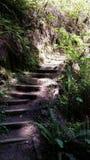 Escadas da fuga Imagens de Stock