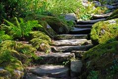 Escadas da rocha Fotografia de Stock Royalty Free
