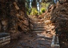 Escadas da rocha no parque da Botânica Fotos de Stock