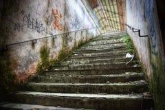 Escadas de Grunge imagem de stock