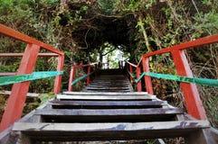 Escadas de madeira Imagem de Stock