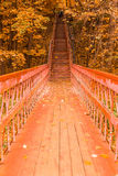 Escadas de madeira com as folhas na floresta do outono imagens de stock