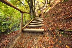 Escadas de madeira do caminho Imagens de Stock