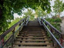 Escadas de madeira em um parque que conduz Fotografia de Stock