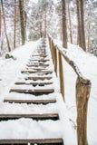 Escadas de madeira longas do monte Imagens de Stock Royalty Free