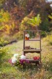 Escadas de madeira no parque do outono na natureza, nas cookies das escadas, maçãs, mel fotografia de stock