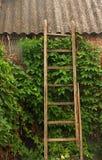 Escadas de madeira velhas na parede de tijolo Imagem de Stock