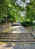 Escadas de pedra Fotografia de Stock