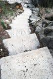 Escadas de pedra Foto de Stock Royalty Free