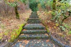 Escadas de pedra em Eagle Creek Overlook imagens de stock