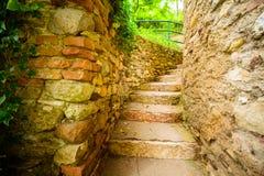 Escadas de pedra no jardim Foto de Stock