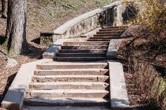 Escadas de pedra no parque foto de stock