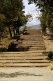 Escadas de pedra no parque Imagem de Stock Royalty Free