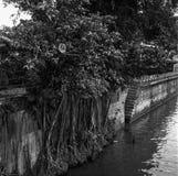 Escadas de pedra que vão para baixo ao rio de Singapura em um dia ensolarado gravado com filme análogo imagem de stock royalty free