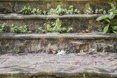 Escadas de pedra velhas fotos de stock royalty free