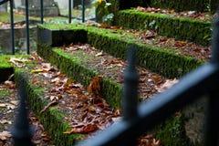 Escadas de pedra velhas cobertas com o musgo imagem de stock