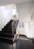 Escadas de Salão Fotos de Stock Royalty Free