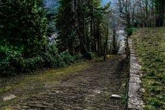 Escadas do castelo imagens de stock