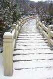 Escadas do cimento Imagem de Stock Royalty Free